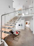 Escalera del paso de progresión de la viga de acero y de madera con el pasamano de cristal