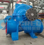 Pompa centrifuga di doppia aspirazione/pompa spaccata di caso