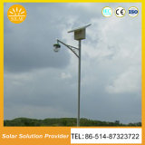 Indicatore luminoso di via solare di vendita caldo personalizzato di garanzia della qualità 40W