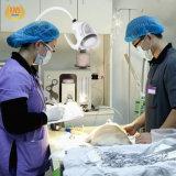 21W LEDのGynecologyの検査ライト