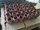 Pompe à eau d'acier inoxydable monophasé 4sdm12/4