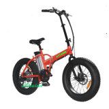 48V 750W 20 '' Foldable E Bicycle Folding Fat Tire Plage Snow Electric Bicycle