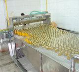 통조림으로 만들어진 오렌지 주스 생산 라인을%s 턴키 프로젝트