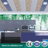 Новые строительные материалы/панель потолка стены Panel/PVC для общественного места