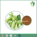 Rutine anti-inflammatoire 0.2% de qualité ; Extrait d'houblon des flavonoïdes 4%