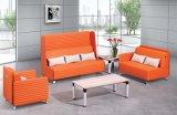 Sofà di legno dell'ufficio di ricezione del tessuto della mobilia moderna del sofà