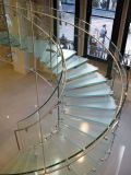 Het gebogen Ontwerp van de Trap van de Trappen van het Glas/Moderne Trap