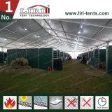 шатер пяди ясности 20m для лошадиных скачек