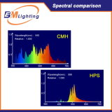 Lastre Growing hidropónico de los sistemas CMH Dimmable 1000W Digitaces