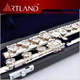 17 agujeros abiertos plateado plata importada cuproníquel flauta profesional (AFL7507)