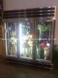 Geladeira de vidro de vidro com 5 prateleiras ajustáveis