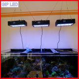 ¡El sorprender! Luz controlable del acuario de Programble 165W LED de la puesta del sol de la salida del sol