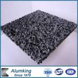 Gomma piuma di plastica del piatto della parete decorativa esterna/alluminio della costruzione