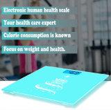 Échelle électronique de poids corporel d'affichage à cristaux liquides de Hostweigh Digital