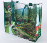 Прокатанная Non сплетенная хозяйственная сумка, мешок Tote