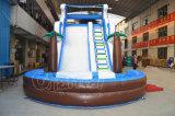 Glissière d'eau gonflable commerciale avec piscine (CHSL384-2)