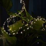 Luz 10m100LED da corda do fio de cobre da tira do USB para a decoração do Natal