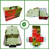 Boîte en carton de empaquetage de fruit de cerise avec le traitement
