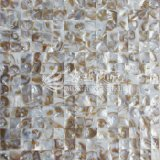 Пресноводная плитка мозаики цвета Brown природы раковины