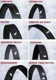 Le PK en caoutchouc ceinturent la poly courroie de V pour la boîte de vitesses avec la qualité et le prix concurrentiel