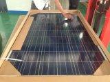 72 cellules vendent le panneau solaire photovoltaïque du module 100W