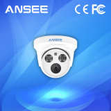 IP van de koepel Camera met de Detector van IRL voor het Systeem van het Alarm van het Huis