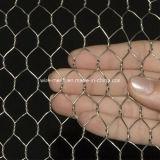 De Hexuitdraai van het roestvrij staal. Het Netwerk van de draad Gabion/Op zwaar werk berekende Hexuitdraai. Het Netwerk van de draad