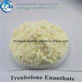 Hormona esteróide Trenbolone Enanthate de Tren E (parábola) para o crescimento do músculo