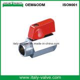 Italycopper cromato di lucidatura ha fatto la mini valvola a sfera d'ottone (AV1046)