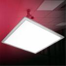 Het LEIDENE Licht van het Comité (EP-DE01)