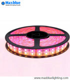 LED Flexible Strip Light Bar/ Bande de LED RVB/Bande LED bande de lumière/LED Flexible