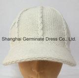 Мода зима вязание Red Hat с солнцезащитный козырек (Hjb056)