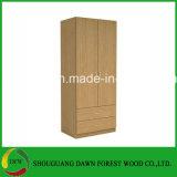 Zwei Türen und zwei Fach-Garderoben-Entwurf