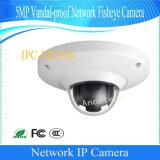 Cámara de vídeo llena de Fisheye Digital de la red de Dahua 5MP HD (IPC-EB5500)