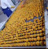 Желтый сладостный мандарин младенца с упаковкой коробки