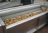 Моющее машинаа овоща редиски Peeler плодоовощ турнепса машины Vegetable чистки моркови щетки