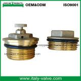 Kundenspezifisches Qualitätsmessingluft-Entlüftungsventil (AV3068)