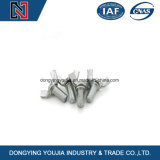 Zerteilt verzinkter Stahl DIN316 Flügel-mit Mutterbolzen Schrauben