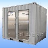 """20"""" em contentores frigoríficos com unidade de refrigeração"""