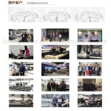 Multi máquina de estaca da tela das camadas para a indústria do interior do carro
