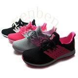 Turnschuh-Schuhe der neuen heißen ankommenden populären Frauen