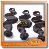 실제적인 Human Hair 6A Malaysian Body Wave