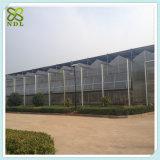 농업 기후 통제 녹색 집