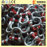 US Type Forged Steel Bow Shackle 2130