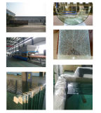 Pool, das durch ausgeglichenes Glas ficht