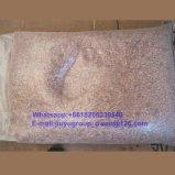長い形のインゲンマメライト斑入りの腎臓豆