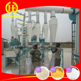 Hot Sale Prix 20 tonnes par jour de farine de maïs Milling Machine Factory