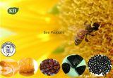 꿀벌 Propolis, 꿀벌 접착제, 꿀벌 Propolis 추출은, Propolis 추출을 순화했다