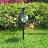 Sonnenenergie strahlt Rasen-Lichter an