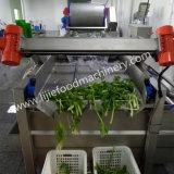 Vegetable&Fruitの洗濯機か商業野菜クリーニング機械